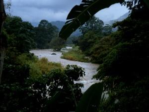 Rio Pejivalle