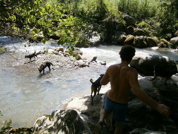Phillip with the dogs at the river